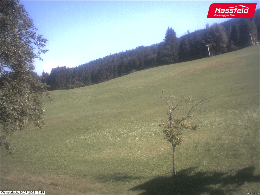Nassfeld webcam - Pramollo Weissbriach
